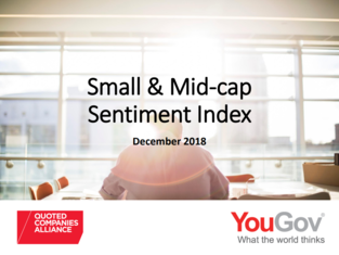 Small & Mid-Cap Sentiment Index results (H2 2018)